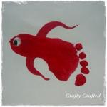 pesciolino rosso